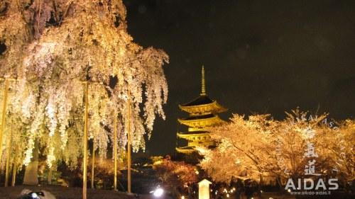 Kelionė į Japoniją 2013, 2 dalis