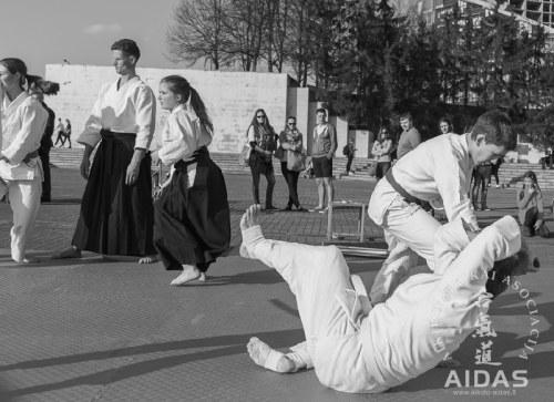 Aikido praktika sakurų parke 2014 05